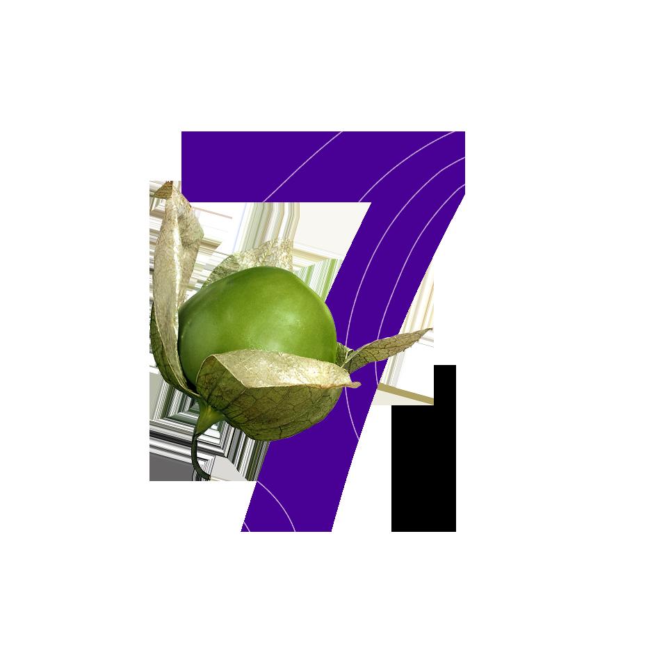 8 ингредиентов «вкусной» e-learning программы